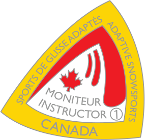 cads level 1 certification pin